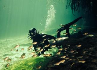 Cenote Manatí