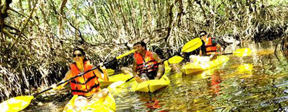turismoespecial_1389386884_paseo-en-kayak