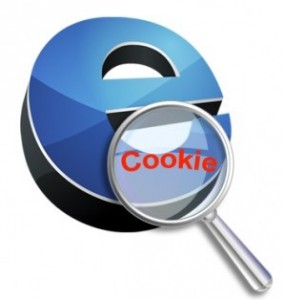 Eliminar cookies, Foto: www.intecnor.com