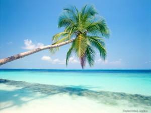 Tulum, Foto: www.tripadvisor.com.mx